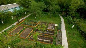 garden-01